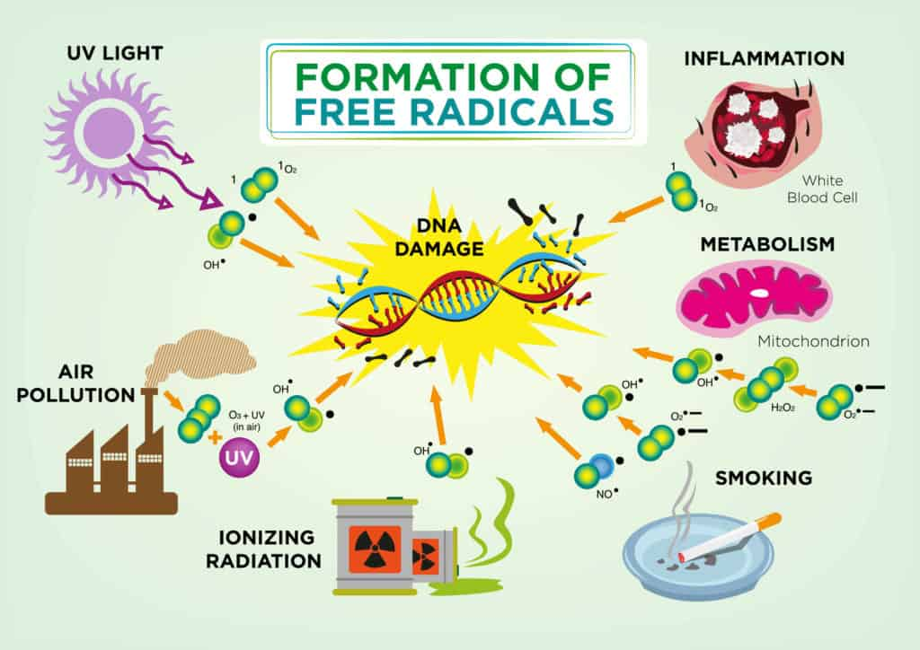 Free radicals formation