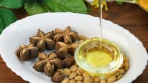印加果油減肥